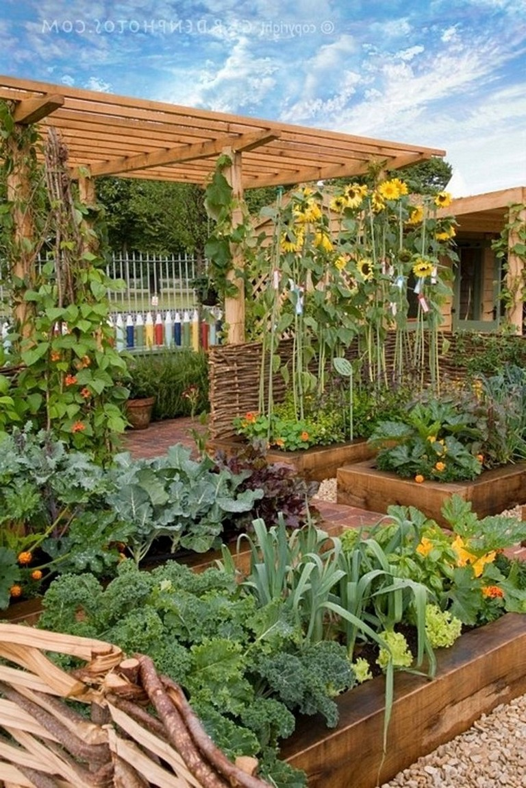 35+ Creative And Simple DIY Vertical Garden Ideas - Page 4 ...
