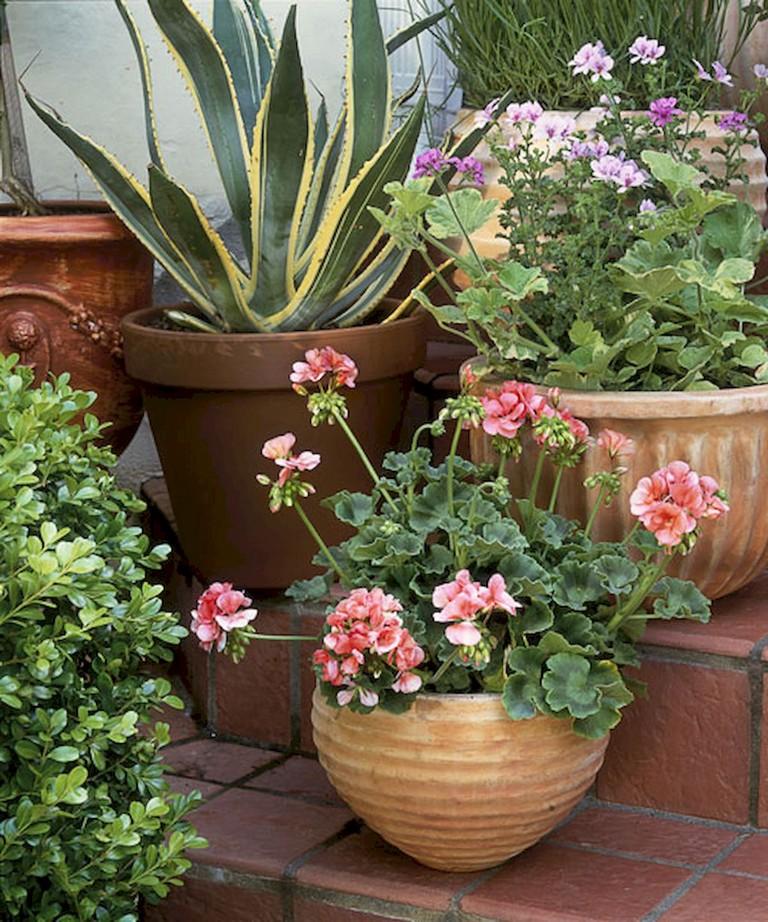 Container Gardening Ideas For Summer: 59+ Wondeful Summer Container Gardening Ideas Decorations