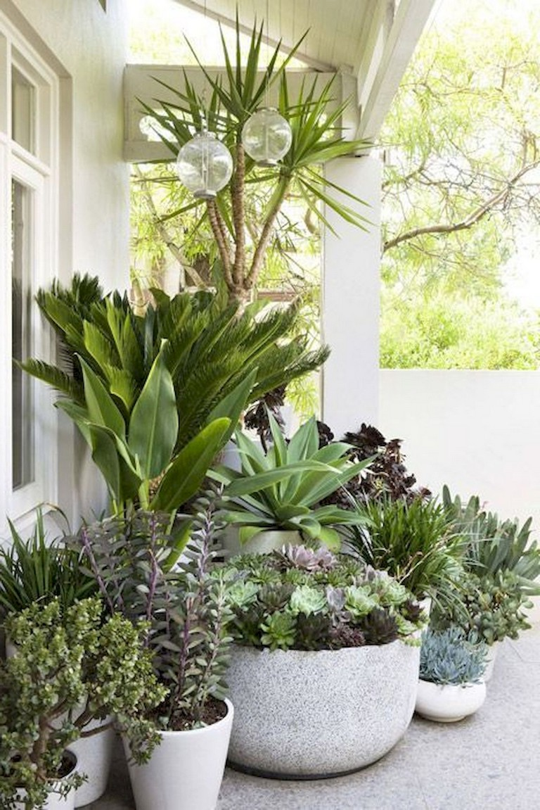 59 Wondeful Summer Container Gardening Ideas Decorations And Makeover